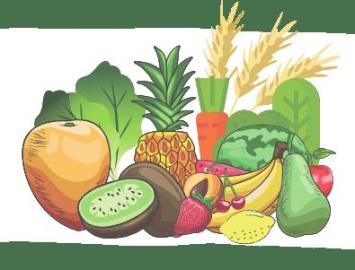 Obst und Gemüse Illustration
